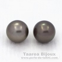 2 Tahitian Pearls Round C 12.3 mm