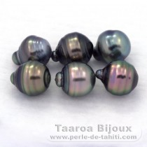 Lot of 6 Tahitian Pearls Ringed C from 8.5 to 8.8 mm
