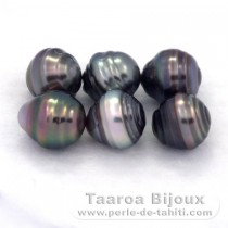 Lot of 6 Tahitian Pearls Ringed C from 8.5 to 8.6 mm