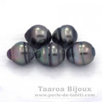 Lot of 5 Tahitian Pearls Ringed C from 8.5 to 8.8 mm