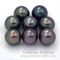 Lot of 8 Tahitian Pearls Round C from 9 to 9.3 mm