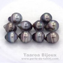 Lot of 10 Tahitian Pearls Ringed C from 8 to 8.2 mm