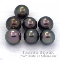 Lot of 7 Tahitian Pearls Round C from 8 to 8.3 mm
