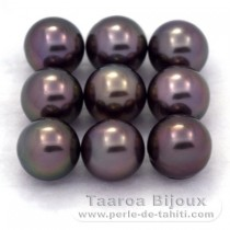 Lot of 9 Tahitian Pearls Round C from 8.5 to 8.8 mm