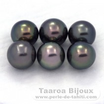 Lot of 6 Tahitian Pearls Round C from 8.5 to 8.9 mm