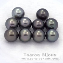 Lot of 10 Tahitian Pearls Round C from 8.5 to 8.9 mm