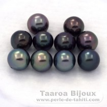 Lot of 10 Tahitian Pearls Round C from 8 to 8.3 mm