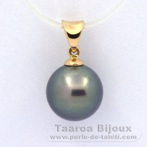 18K solid Gold Pendant and 1 Tahitian Pearl Near-Round A 9.9 mm