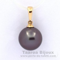 18K solid Gold Pendant and 1 Tahitian Pearl Round B 11 mm