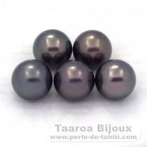 Lot of 5 Tahitian Pearls Round D from 9.2 to 9.4 mm