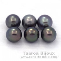 Lot of 6 Tahitian Pearls Round C from 8.5 to 8.8 mm