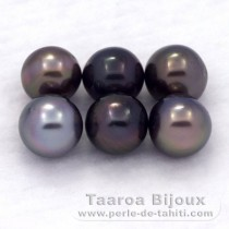 Lot of 6 Tahitian Pearls Semi-Baroque C/D from 8 to 8.4 mm