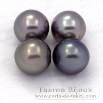 Lot of 4 Tahitian Pearls Round C from 8.1 to 8.4 mm