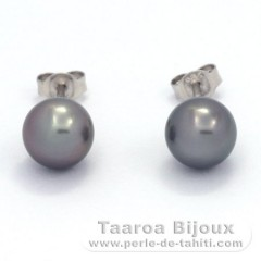 Rhodiated Sterling Silver Earrings and 2 Tahitian Pearls Round B/C 8.3 mm
