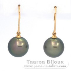 18K solid Gold Earrings and 2 Tahitian Pearls Round C+ 11.3 and 11.4 mm