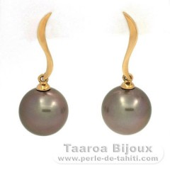 18K solid Gold Earrings and 2 Tahitian Pearls Round B 10.3 and 10.4 mm