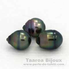 Lot of 3 Tahitian Pearls Ringed B 10 mm