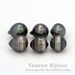Lot of 6 Tahitian Pearls Ringed D from 9.5 to 9.8 mm