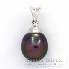 Rhodiated Sterling Silver Pendant and 1 Tahitian Pearl Ringed B 10.1 mm