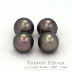 Lot of 4 Tahitian Pearls Round C from 9.3 to 9.4 mm