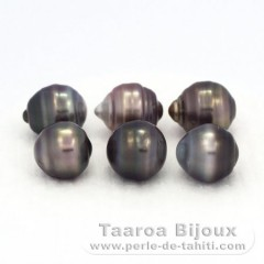 Lot of 6 Tahitian Pearls Ringed C/D from 9.5 to 9.8 mm