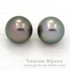 Lot of 2 Tahitian Pearls Round C 11.3 mm