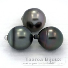 Lot of 3 Tahitian Pearls Semi-Baroque C from 12.7 to 12.9 mm