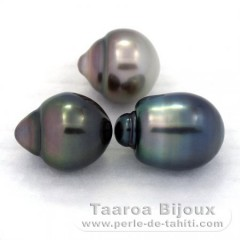 Lot of 3 Tahitian Pearls Semi-Baroque B from 10.5 to 10.6 mm