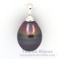 Rhodiated Sterling Silver Pendant and 1 Tahitian Pearl Ringed B 12 mm