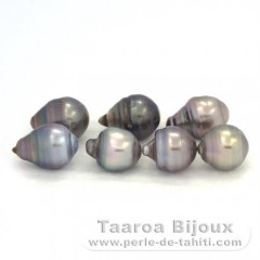 Lot of 7 Tahitian Pearls Ringed D from 9.5 to 9.7 mm