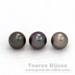 Lot of 3 Tahitian Pearls Near-Round C from 9 to 9.2 mm
