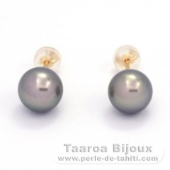 18K solid Gold Earrings and 2 Tahitian Pearls Round B 8.7 mm