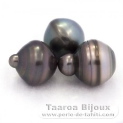 Lot of 3 Tahitian Pearls Ringed C from 13 to 13.4 mm