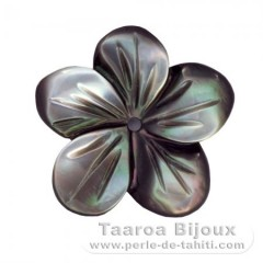 Flower of Tahitian mother-of-pearl - Diameter : 14 mm