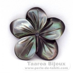 Flower of Tahitian mother-of-pearl - Diameter : 15 mm