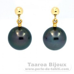 18K solid Gold Earrings and 2 Tahitian Pearls Round B 8.2 mm