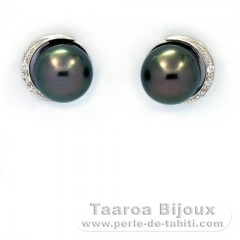 Rhodiated Sterling Silver Earrings and 2 Tahitian Pearls Near-Round 1 B & 1 C 8.4 mm