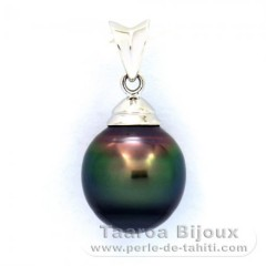 Rhodiated Sterling Silver Pendant and 1 Tahitian Pearl Ringed C 10.1 mm
