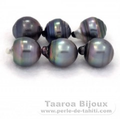 Lot of 6 Tahitian Pearls Ringed D from 13 à 13.4 mm