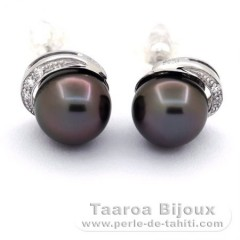 Rhodiated Sterling Silver Earrings and 2 Tahitian Pearls Round C 8.9 mm