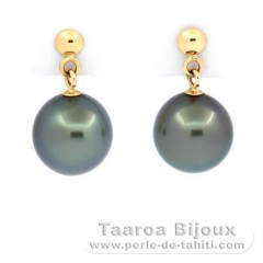 18k solid Gold Earrings and 2 Tahitian Pearls Near-Round B 8.2 mm