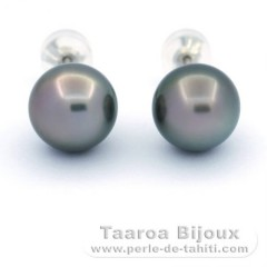 Rhodiated Sterling Silver Earrings and 2 Tahitian Pearls Round C 10.8 mm
